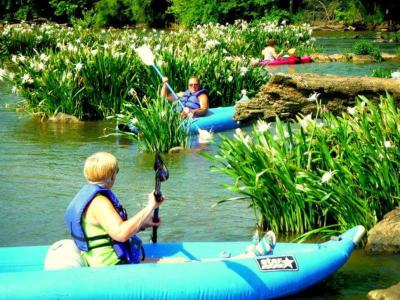 spider lily paddle trips